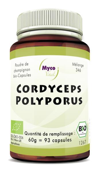 Cordyceps-Polyporus Capsules de poudre de champignons biologiques (mélange 346)