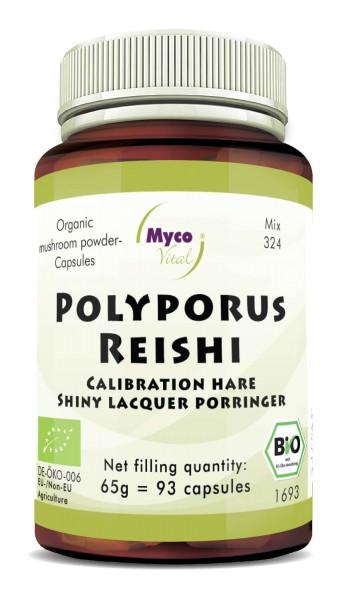 Polyporus-Reishi Capsules de poudre de champignons biologiques (mélange 324)
