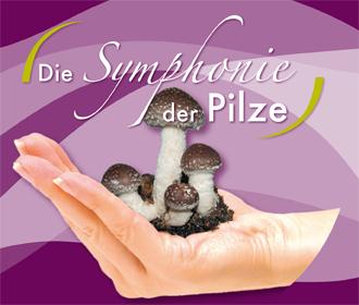 CD: Symphonie der Pilze