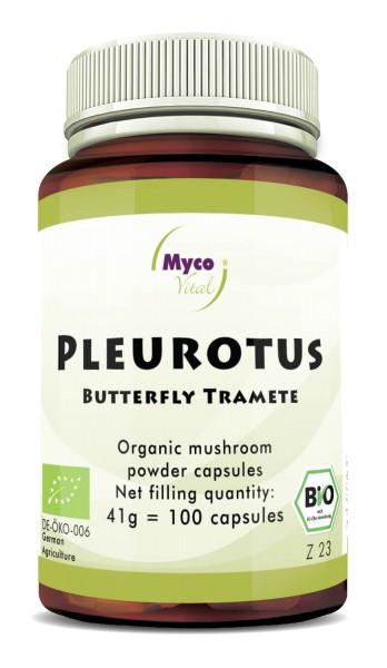 Pleurotus Gélules de poudre de champignon vital biologique