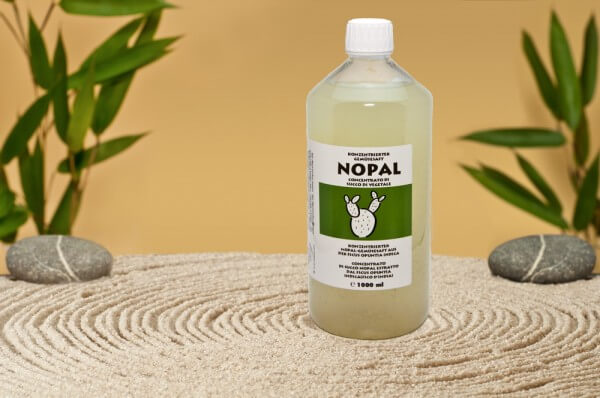 Concentrated Nopal vegetable juice