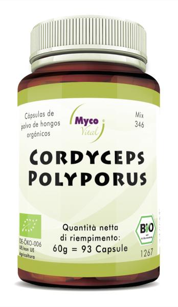Cordyceps-Polyporus Capsule di polvere di funghi organici (miscela 346)