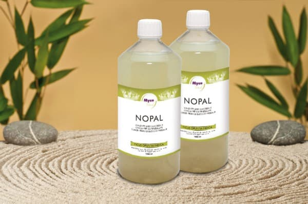 Succo vegetale Nopal biologico, concentrato 1 litro
