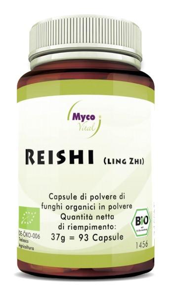 Reishi capsules de poudre de champignons vitaux biologiques