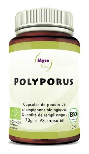 Polyporus Capsule di polvere di funghi vitali organici
