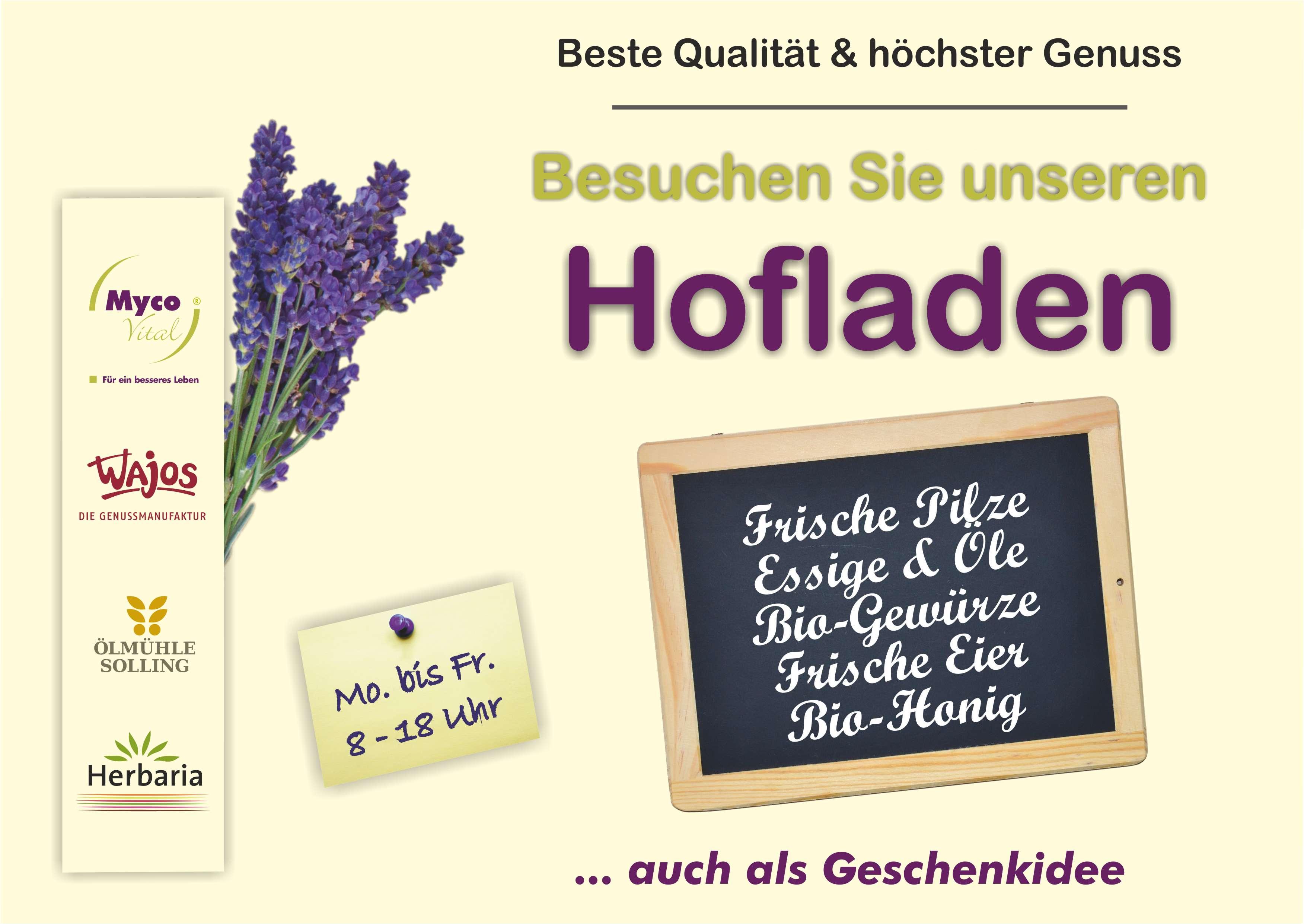 2017-05-Anzeige_Flyer_aktuell-A6-MVG-quer