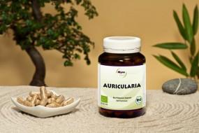 BIO-Auricularia Pilzpulverkapseln