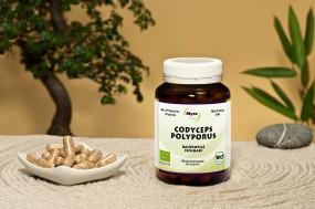 BIO CORDYCEPS-POLYPORUS Pilzpulver-Kapseln (Mischung Nr. 346)