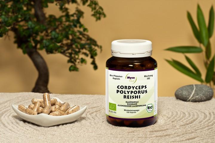 BIO CORDYCEPS-POLYPORUS-REISHI Pilzpulver-Kapseln (Mischung Nr. 352)