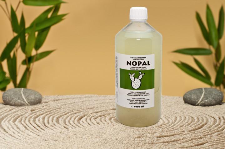 Konzentrierter Nopal-Gemüsesaft
